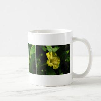 Three Yellow Four O'Clocks Coffee Mug