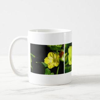 Three Yellow Four O'Clocks Mugs
