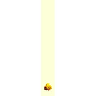 Three Yellow Mums tie