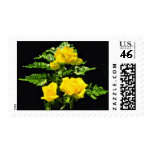 Three yellow roses  flowers postage stamps
