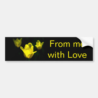 Three Yellow Tulips Bumper Sticker