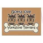 Three Yorkshire Terriers Card