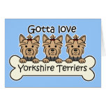 Three Yorkshire Terriers Cards