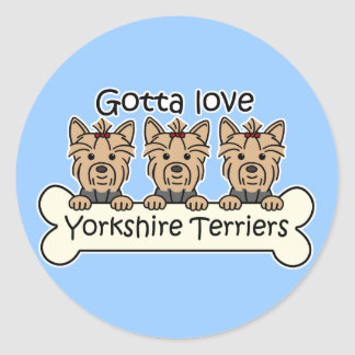 Three Yorkshire Terriers Classic Round Sticker