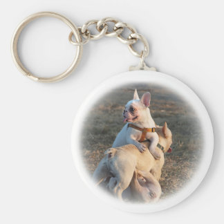 Three Young Bulldogs are Having Fun Wrestling! Key Chains