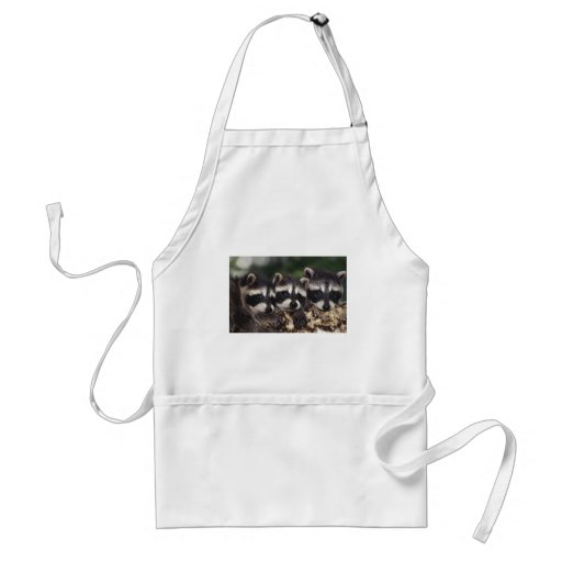 Three Young Raccoons Apron