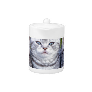 Three young silver tabby cats in checkered basket teapot