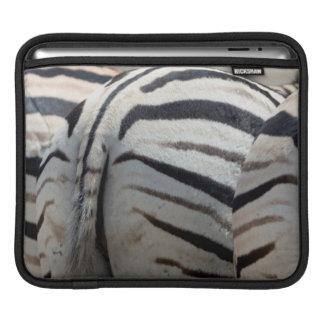 Three zebra tails and behinds iPad sleeve