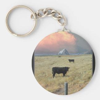 threeblackbulls keychain