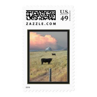 threeblackbulls postage stamp