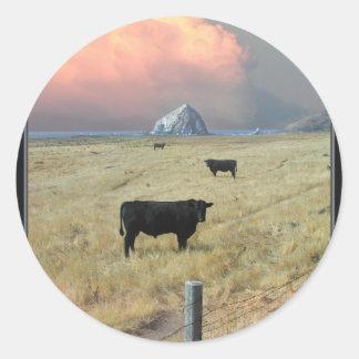 threeblackbulls sticker