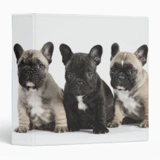 Threee Pedigree Puppies Binder