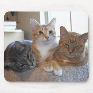 Three's a crowd mouse pad