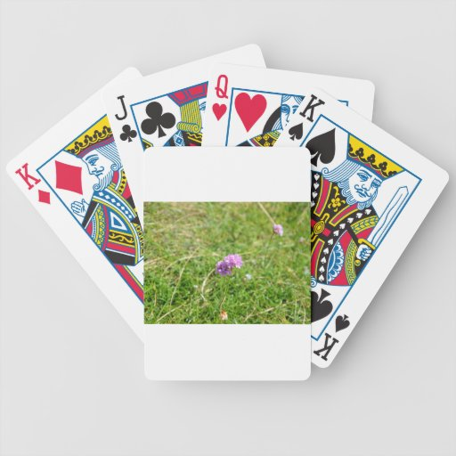 Thrift, Sea Pink Playing Cards