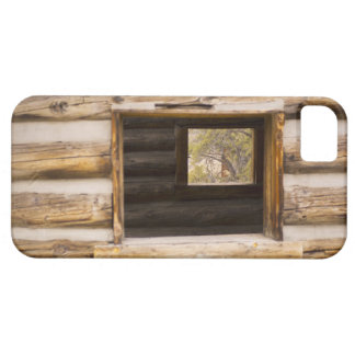 Through and Through Cabin Window iPhone SE/5/5s Case