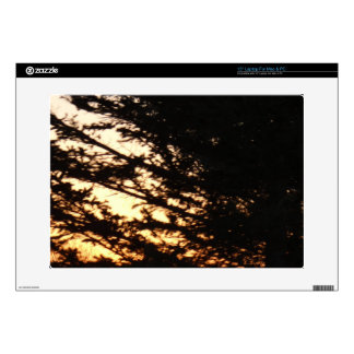"""Through the Branches 15"""" Laptop Skins"""