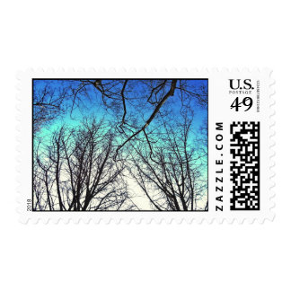 """""""Through the Branches a Gradation of Blues"""" Postage Stamp"""