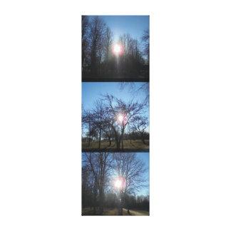 Through the branches canvas print
