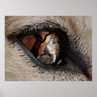 Through The Eye wall poster