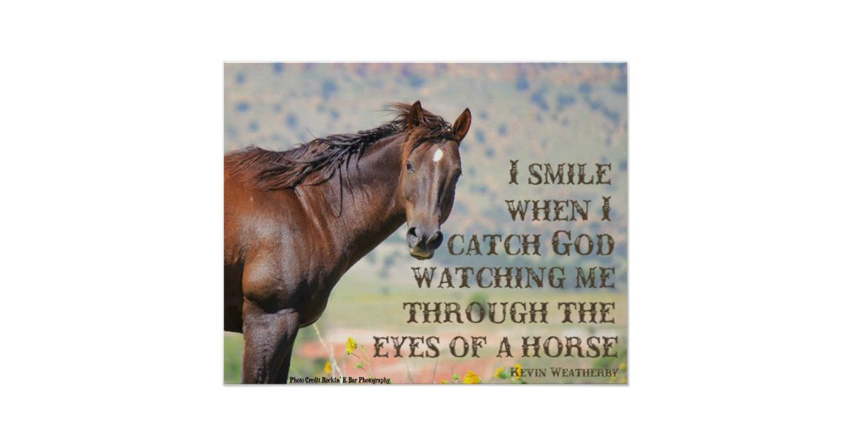 Through The Eyes Of A Horse Poster Zazzle