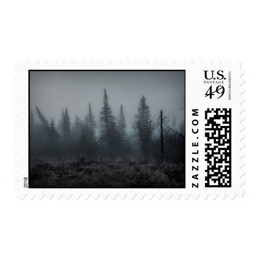 Through The Fog Stamp
