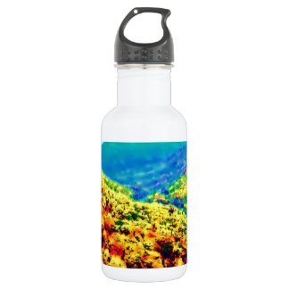 Through The Mountains Air Brushed Water Bottle