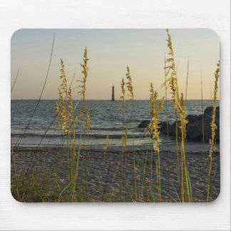 Through The Sea Oats Mouse Pad