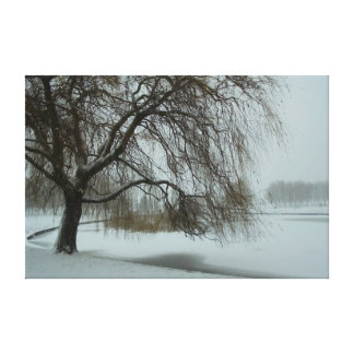 Through the snow canvas print