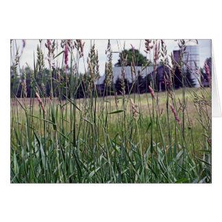 Through The Tall Grass Card