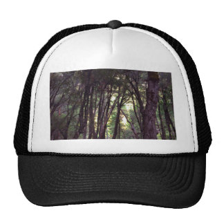 Through the Trees Trucker Hat