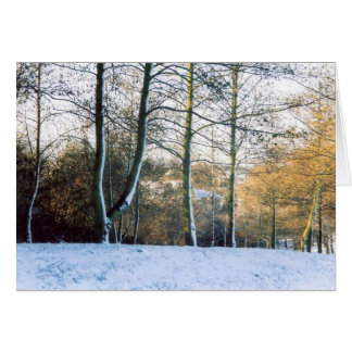 Through the Winter Trees Greeting Card