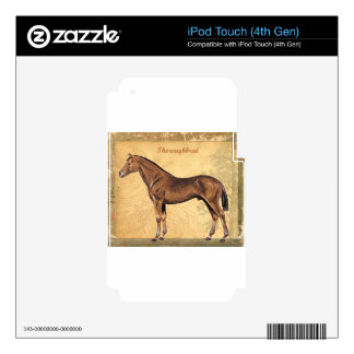 Throughbred Brown Horse iPod Touch 4G Skin