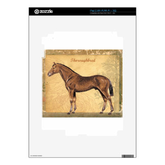 Throughbred Brown Horse Skins For iPad 2