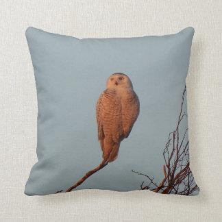 Throw Pillow Funny Night Owl