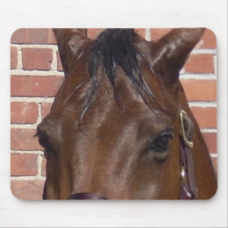 Thru A Horse's Eyes Mouse Pad