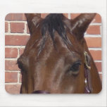 Thru A Horse's Eyes Mouse Pads