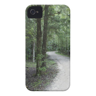 Thru the Florida Woods iPhone 4 Cover