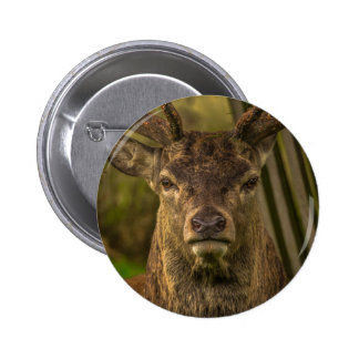 Thug deer button