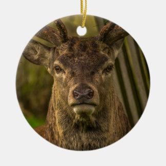 Thug deer ceramic ornament