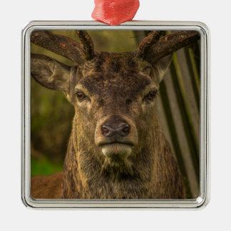 Thug deer metal ornament