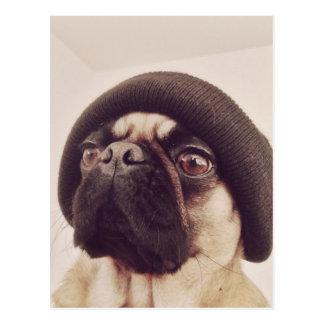 Thug Pug with hat design Postcard