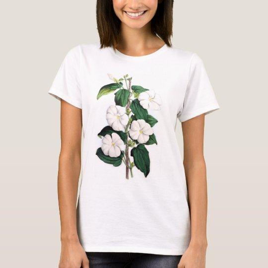 Thunbergia Fragrans T-Shirt