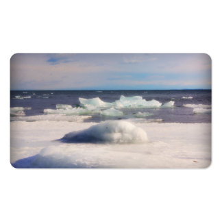 Thunder Bay, Ontario, Canada Double-Sided Standard Business Cards (Pack Of 100)