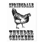 Thunder Chickens Postcard