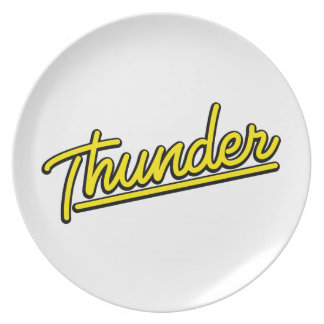 Thunder in yellow party plates