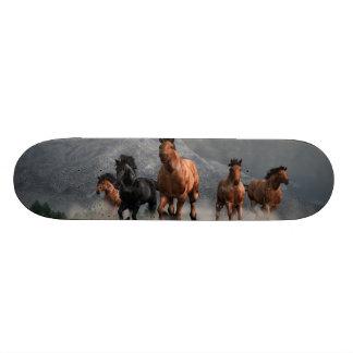 Thunder on the Plains Skate Board Deck