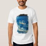 Thunderstorm Clouds Shirt