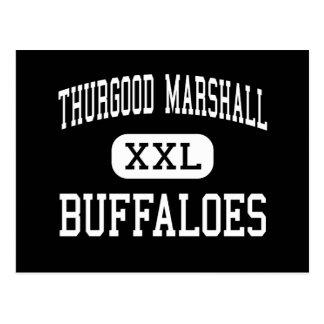Thurgood Marshall - Buffaloes - Missouri City Postcard