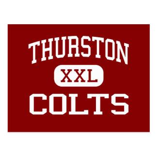 Thurston - Colts - High - Springfield Oregon Postcard