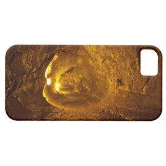 Thurston Lava Tube Hawaii Volcanoes National Park iPhone SE/5/5s Case